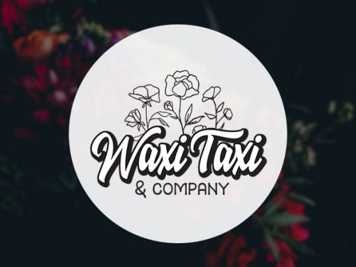 Waxi Taxi and Company