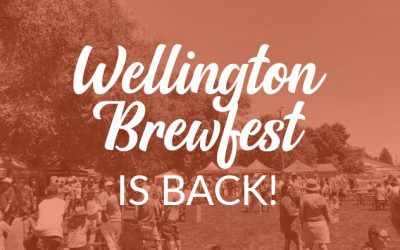 Wellington Brewfest 2021